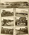 Great San Antonio, the city of destiny and of your destination (1918) (14598210608).jpg
