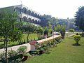 Green Grove Public School Khanna.jpg