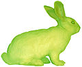Green rabbit.jpg
