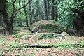 Großsteingrab Heine 2 01.JPG
