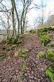 Hüttingen a.d. Kyll (Eifel); Naturschutzgebiet In der Held a.jpg