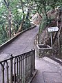 HK 香港 VP 維多利亞山頂 Victoria Peak Findlay Road 種植道 Plantation Road 白加道 Barker Road April 2020 SSG 04.jpg