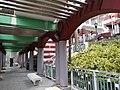 HK SW 上環 Sheung Wan 堅巷花園 Caine Lane Garden February 2020 SS2 15.jpg