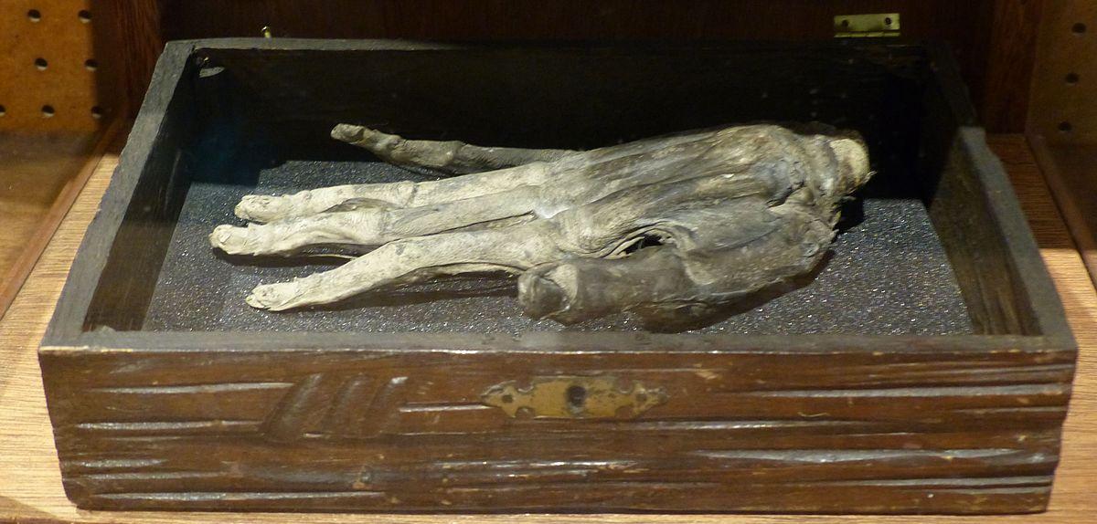 Hand of Glory - Wikipedia