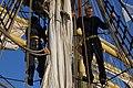 Hanse Sail 2011 - Mannschaft in der Takelage (6386177277).jpg