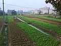 Hanyang, Wuhan, Hubei, China - panoramio - fllee (2).jpg
