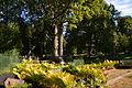 Hargla kalmistul 2013.JPG