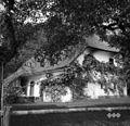 Hiša z dvoriščne strani, Podboršt 1950.jpg