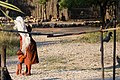 Himba-2220 - Flickr - Ragnhild & Neil Crawford.jpg