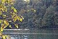 Hinckston Dam - panoramio (10).jpg