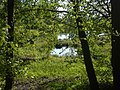 Hinterberg Lindau ZH 01.jpg