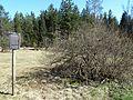 Hinterzartener Moor 1130093.jpg