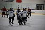 Hockey 20080824 (2795669756).jpg