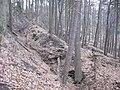 Hohlwege im Pfälzer-Wald.jpg