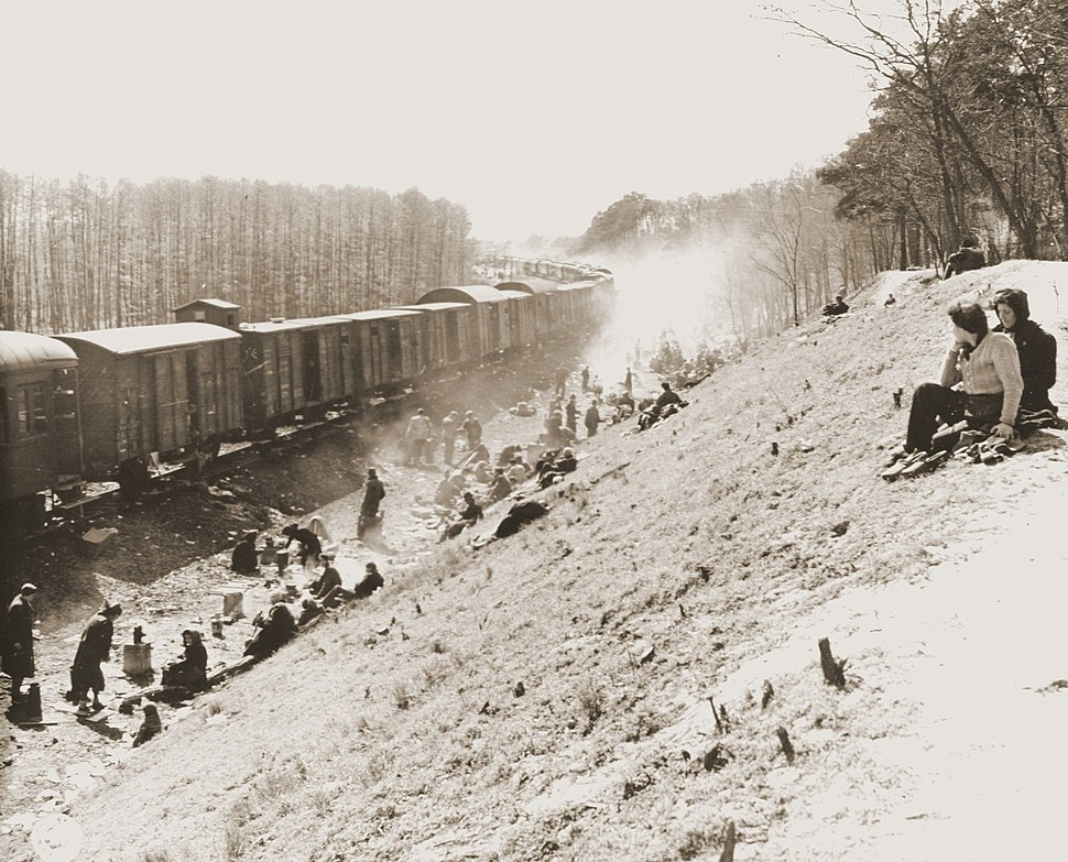 Holocaust train liberated by US Army