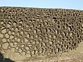 Honeycomb on the Harbour Wall, Watchet - geograph.org.uk - 1707186.jpg