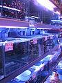 Hong Kong Goldfish Market IMG 5474.JPG
