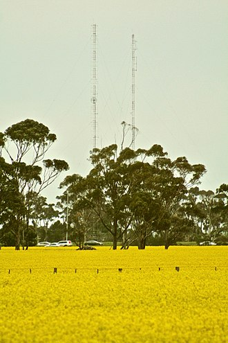 Hoppers Crossing, Victoria - Canola Fields and Radio Towers in Hoppers Crossing