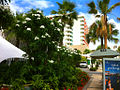 Hotel La Concha.jpg