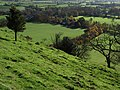 Huish Hill - geograph.org.uk - 282627.jpg