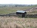 Hut on Scargill Low Moor - geograph.org.uk - 365536.jpg