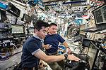 ISS-44 Kimiya Yui and Kjell Lindgren in the Destiny module.jpg