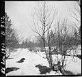 I nærheten av Nordmo (NRA S-1709 B0752).jpg