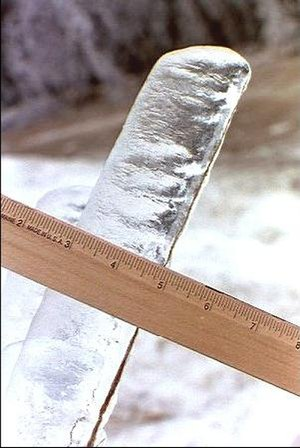 January 1998 North American ice storm - Two inches of ice on a twig, illustrating the impact.