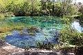Ichetucknee Springs State Park Head Spring 5.jpg