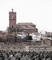 Iglesia y vides de El Toboso RED.jpg