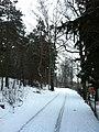 Imanta, Kurzeme District, Riga, Latvia - panoramio (30).jpg