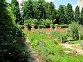 Jardin Bercy.JPG