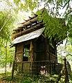 Jardin tropical - Paris - Pavillon de la Réunion - 02.jpg