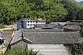 Jinyun, Lishui, Zhejiang, China - panoramio - 梅白 (21).jpg