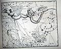 "Johannes Hevelius - Prodromus Astronomia - Volume III ""Firmamentum Sobiescianum, sive uranographia"" - Tavola TT - Hydra et Robur Carolinum.jpg"