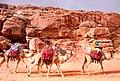Jordan 2011-02-08 (5589217099).jpg