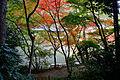 Joruriji Kizugawa Kyoto pref Japan04n.jpg