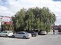 KÖfteci Sofu Usta - panoramio.jpg