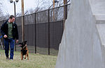 K-9 training 150319-F-OH119-881.jpg