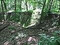 Kaniv Nature Reserve (May 2018) 73.jpg