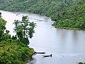 Kaptai Lake surrounded by Soothing Greenary.jpg
