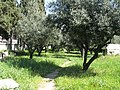 Kerameikos, Ancient Graveyard, Athens, Greece (4454995506).jpg