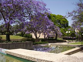 Kfar Saba spring in the city.JPG