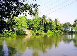 Pond in Khoksa