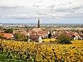 Kintzheim, vu de la route du Haut-Koenigsbourg. (1).jpg