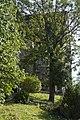 Kirche - Schwertberg (0).jpg