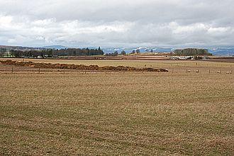 Kirkbuddo - Fields near Kirkbuddo
