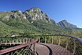 Kirstenbosch National Botanical Garden, Cape Town (32533368562).jpg