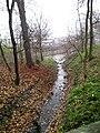 Kohoutovický potok teče do Svratky.jpg