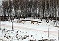 Kolomensky District, Moscow Oblast, Russia - panoramio (40).jpg